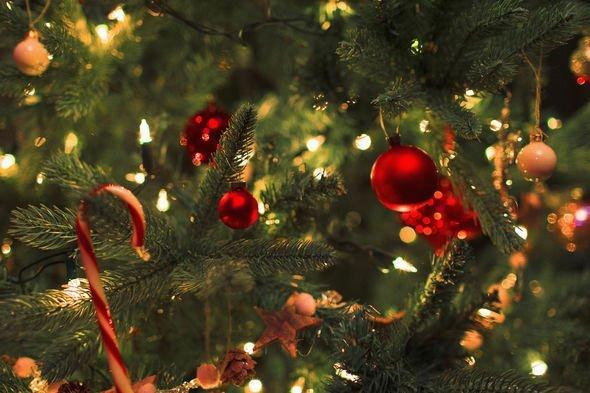 Christmas-tree-2196762.jpg